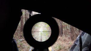 2020's Best Deer Hunting Scope Reviews