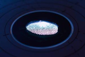 Best Biometric Gun Safe Overall