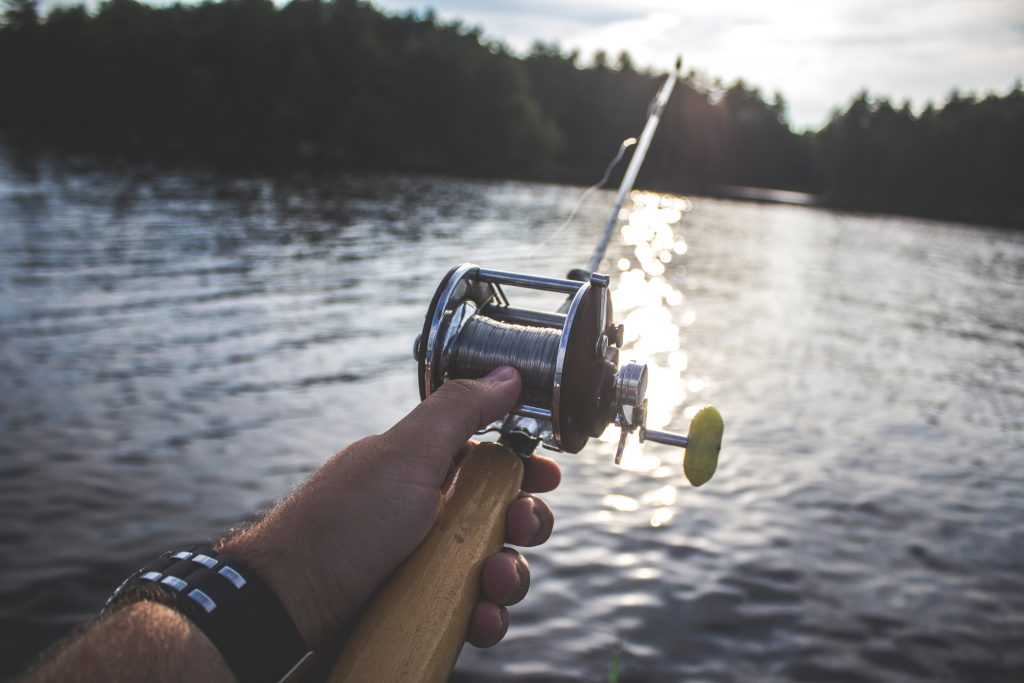 Best Fishing Rod Overall