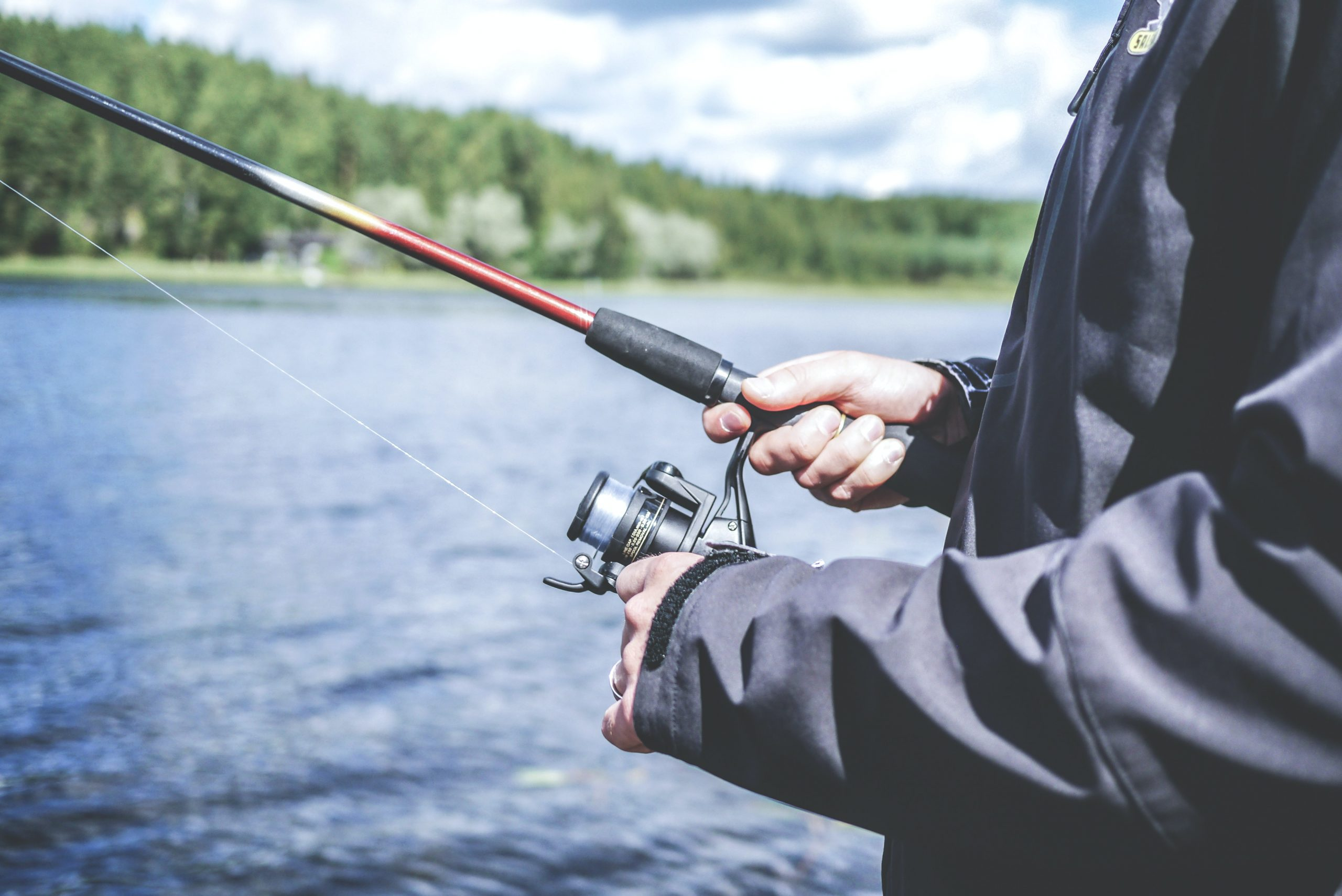 Best Fly Fishing Rods Overall