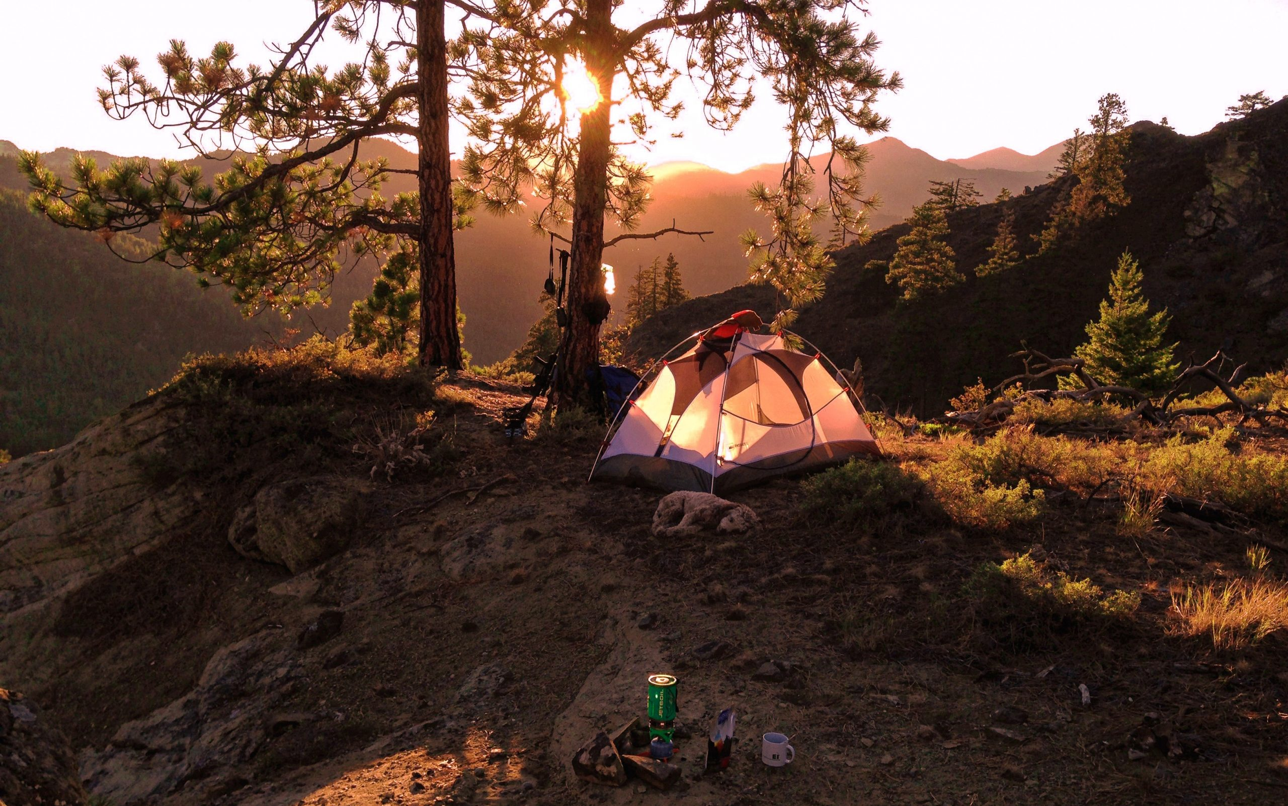 Best Four-Person Tent