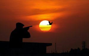 Best Hunting Shotgun