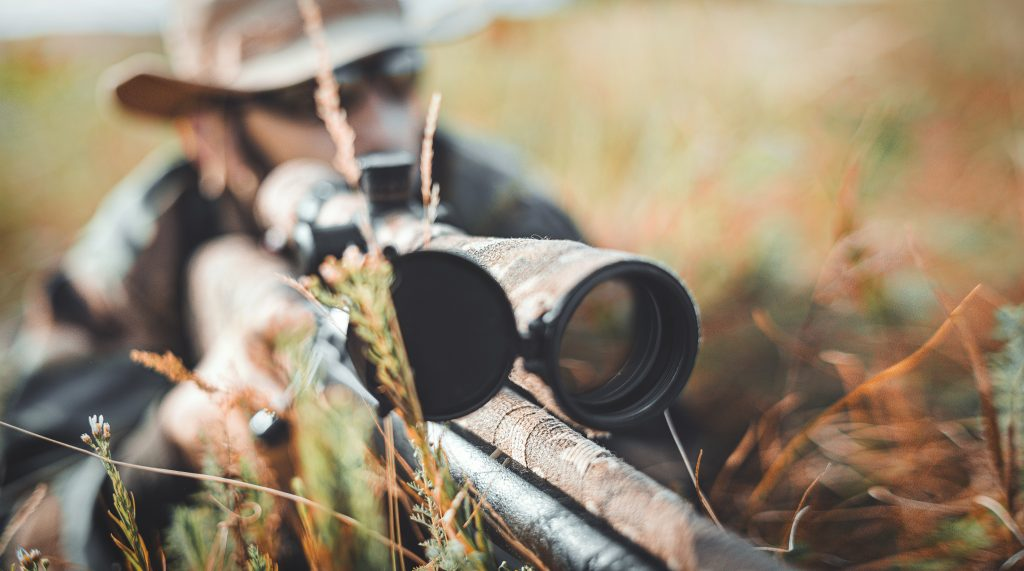 Best Scope for Coyote Hunting