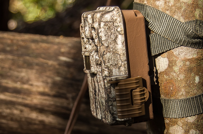 Best Wireless Trail Camera