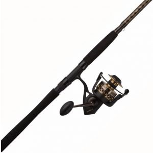 Penn Battle II Spinning Fishing Rod And Reel Combo
