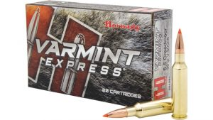 Hornady Varmint Express 6.5 Creedmoor 95 grain V-Max